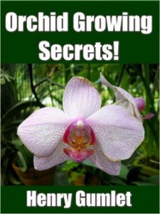 Orchid Growing Secrets