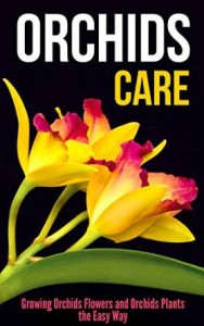 Orchids Care Growing Orchids Flowers and Orchids Plants the Easy Way