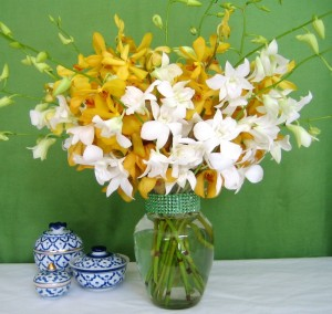 Just Orchids - Mixed Yellow and White
