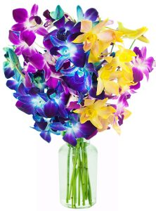Exotic Rainbow Orchid Bouquet